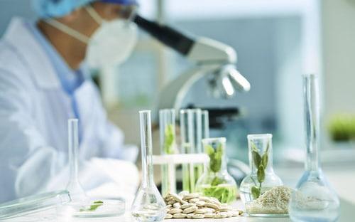 Laboratoire biotechnologique analysant les effets du cannabis