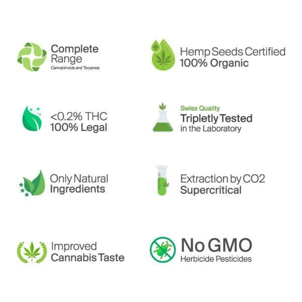 Blossom Rohes Bio CBD+CBDa Öl 16% - Ultra Reich+