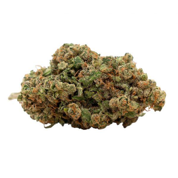 Herba di Berna Harlequin Indoor 2, CBD Blüten