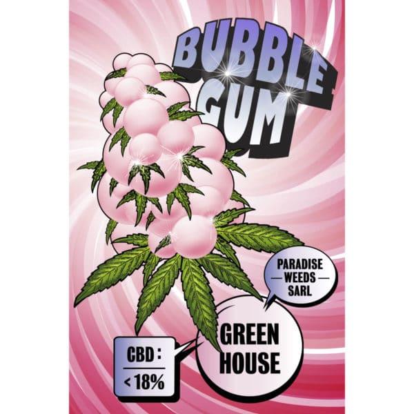 Paradise Weeds Bubble Gum Greenhouse 1, CBD Blüten