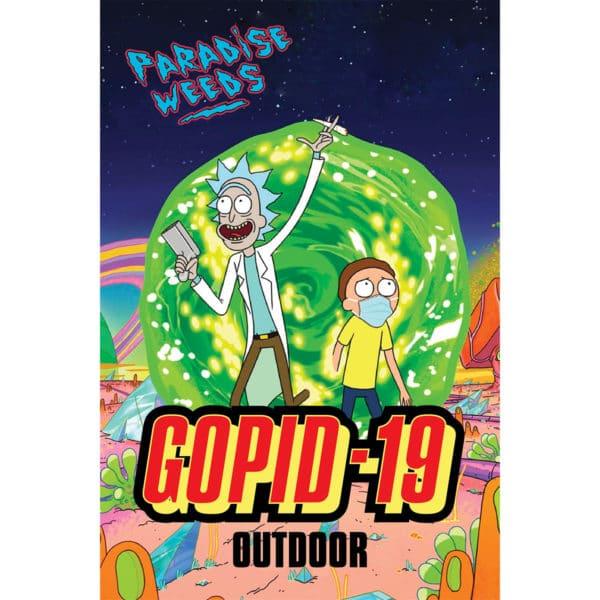 Paradise Weeds Gopid-19 Outdoor, Fleurs CBD