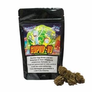 Paradise Weeds Gopid-19 Outdoor, CBD Flowers