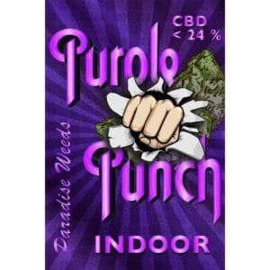 Paradise Weeds Purple Punch Indoor, CBD Blüten