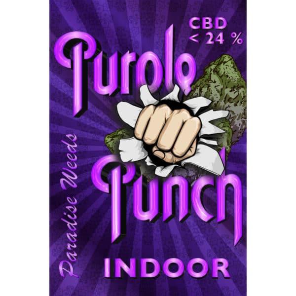 Paradise Weeds Purple Punch Indoor 1, CBD Blüten