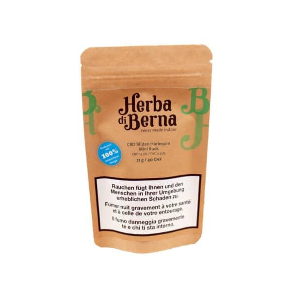 Herba di Berna Harlequin Indoor Minibuds, Small Buds